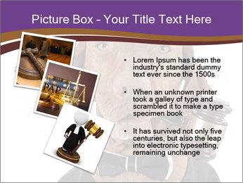 Golden color pure breed vizsla dog PowerPoint Template - Slide 17