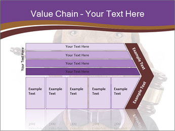 Golden color pure breed vizsla dog PowerPoint Template - Slide 27