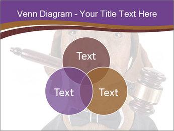 Golden color pure breed vizsla dog PowerPoint Template - Slide 33
