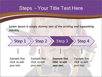 Golden color pure breed vizsla dog PowerPoint Template - Slide 4