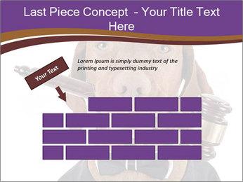 Golden color pure breed vizsla dog PowerPoint Template - Slide 46