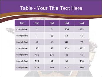 Golden color pure breed vizsla dog PowerPoint Template - Slide 55