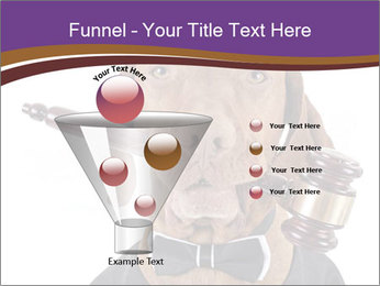 Golden color pure breed vizsla dog PowerPoint Template - Slide 63
