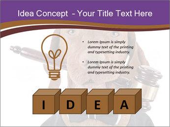 Golden color pure breed vizsla dog PowerPoint Template - Slide 80