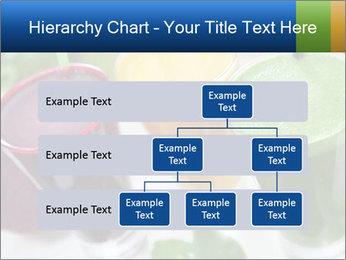 Beetroot PowerPoint Templates - Slide 67
