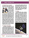 0000093910 Word Template - Page 3