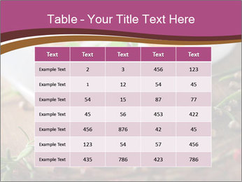 Spices PowerPoint Template - Slide 55