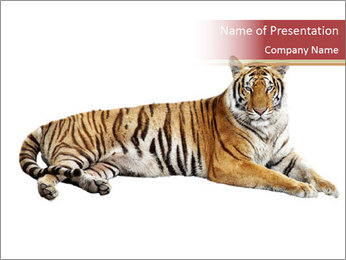 Tiger PowerPoint Template - Slide 1