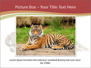 Tiger PowerPoint Template - Slide 15