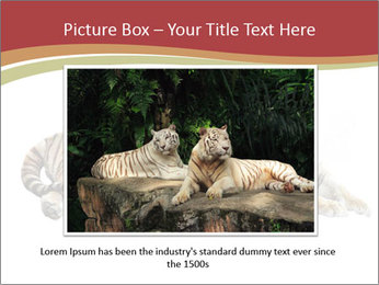 Tiger PowerPoint Template - Slide 16