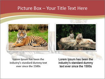 Tiger PowerPoint Template - Slide 18