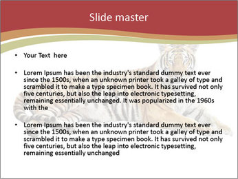 Tiger PowerPoint Template - Slide 2