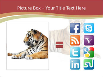 Tiger PowerPoint Template - Slide 21