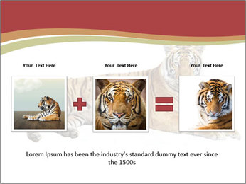Tiger PowerPoint Template - Slide 22