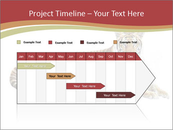 Tiger PowerPoint Template - Slide 25