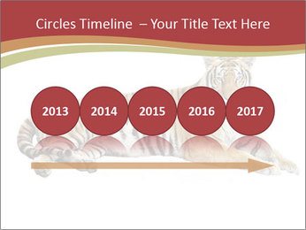 Tiger PowerPoint Template - Slide 29