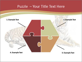Tiger PowerPoint Template - Slide 40