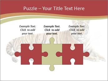 Tiger PowerPoint Template - Slide 42