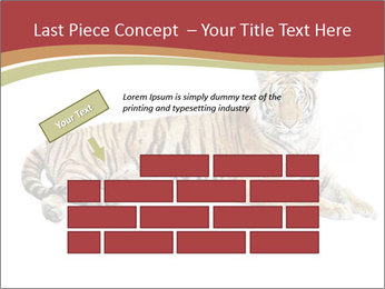 Tiger PowerPoint Template - Slide 46