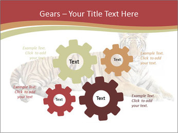 Tiger PowerPoint Templates - Slide 47