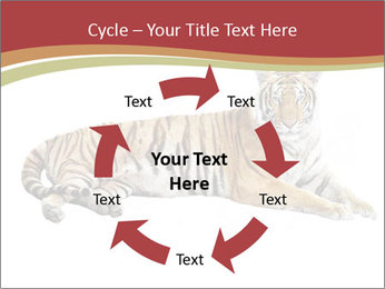 Tiger PowerPoint Template - Slide 62