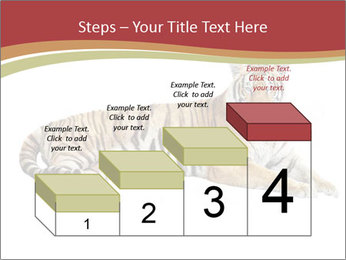 Tiger PowerPoint Template - Slide 64