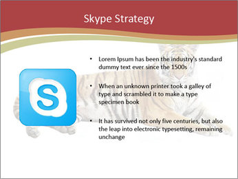 Tiger PowerPoint Template - Slide 8