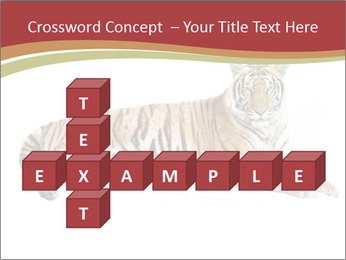 Tiger PowerPoint Template - Slide 82