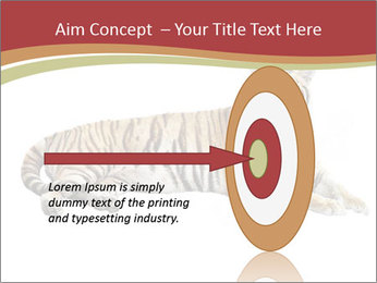 Tiger PowerPoint Template - Slide 83
