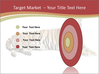 Tiger PowerPoint Template - Slide 84