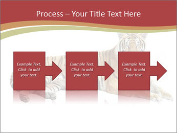 Tiger PowerPoint Template - Slide 88