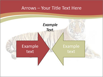Tiger PowerPoint Template - Slide 90