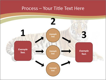 Tiger PowerPoint Template - Slide 92