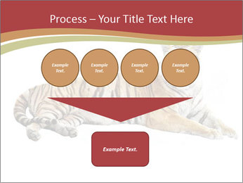 Tiger PowerPoint Template - Slide 93