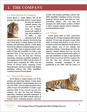 0000093926 Word Template - Page 3