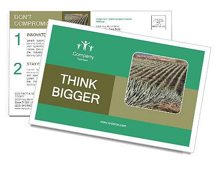 0000093927 Postcard Template