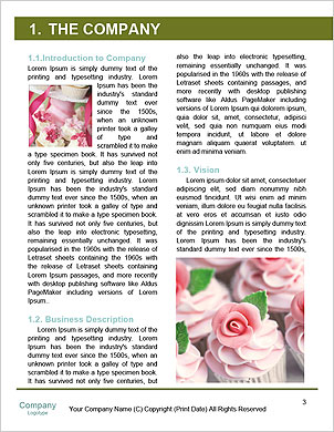 0000093928 Word Template - Page 3