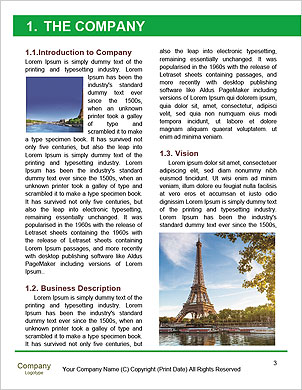 0000093931 Word Template - Page 3