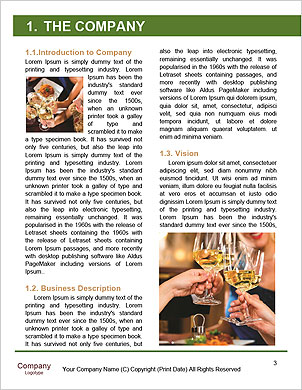 0000093932 Word Template - Page 3
