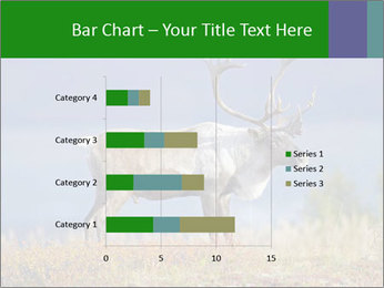 Male Caribou Grazing PowerPoint Templates - Slide 52