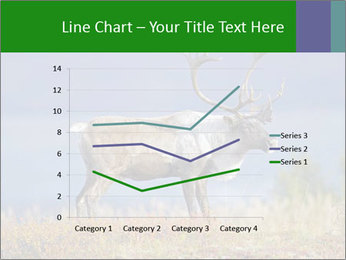 Male Caribou Grazing PowerPoint Templates - Slide 54