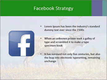 Male Caribou Grazing PowerPoint Templates - Slide 6