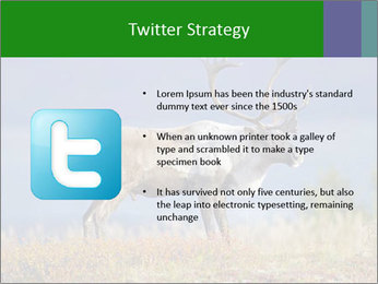 Male Caribou Grazing PowerPoint Templates - Slide 9