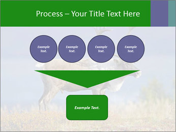 Male Caribou Grazing PowerPoint Templates - Slide 93