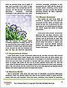 0000093938 Word Templates - Page 4
