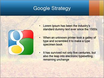 Beautiful autumn forest PowerPoint Template - Slide 10