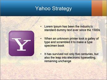 Beautiful autumn forest PowerPoint Template - Slide 11