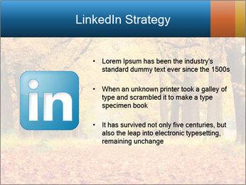 Beautiful autumn forest PowerPoint Template - Slide 12