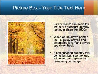 Beautiful autumn forest PowerPoint Template - Slide 13