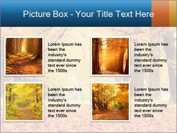 Beautiful autumn forest PowerPoint Template - Slide 14